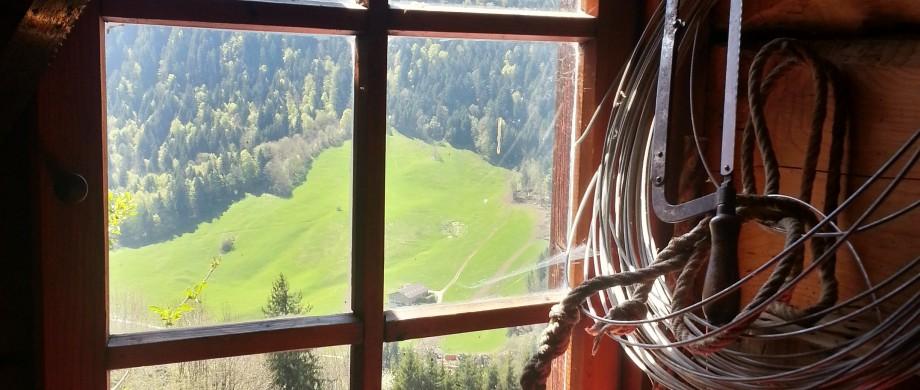 working room window view